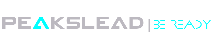 PeaksLead | B2B Lead Generation & Business Contact Data Provider